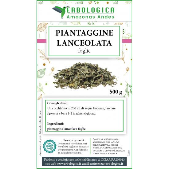 Piantaggine lanceolata tisana 500 grammi