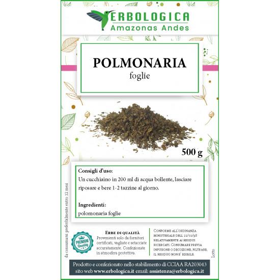 Polmonaria foglie tisana 500 grammi