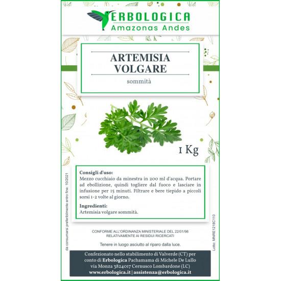 Artemisia tisana confezione da 1 kg