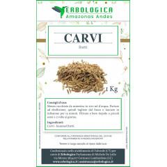 Carvi semi confezione da 1 kg