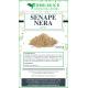 Senape nera polvere spezia 500 grammi
