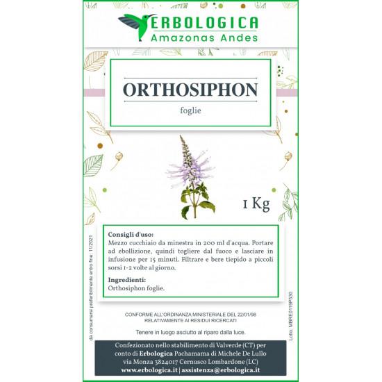 Orthosiphon foglie tisana formato da 1 kg