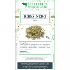 Ribes nero tisana 1 kg