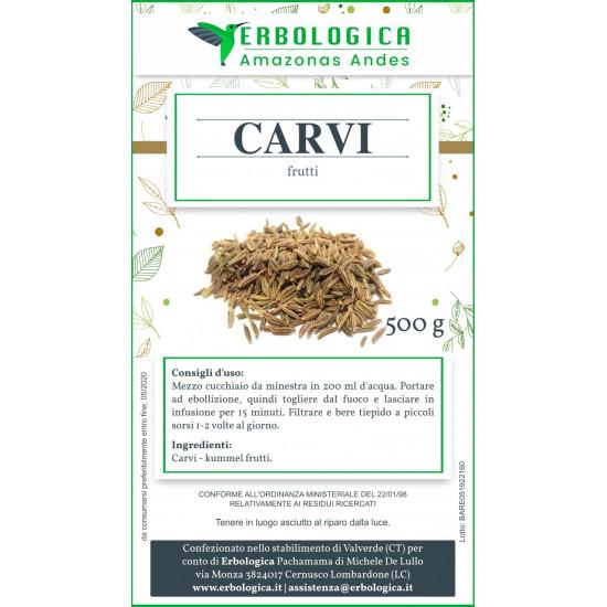 Carvi semi da 500 grammi