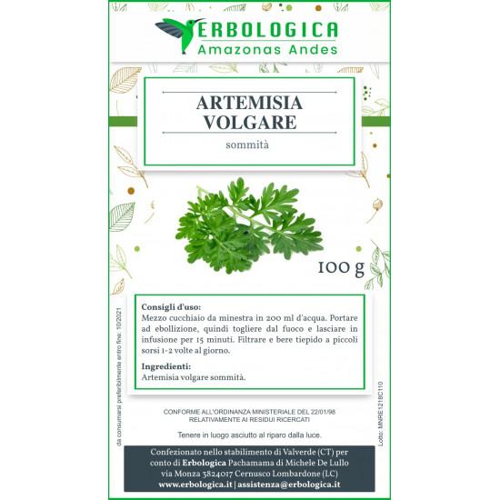 Artemisia pianta taglio tisana 500 grammi