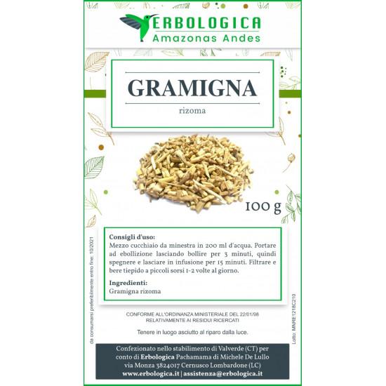 Gramigna Rizoma radice 500 grammi