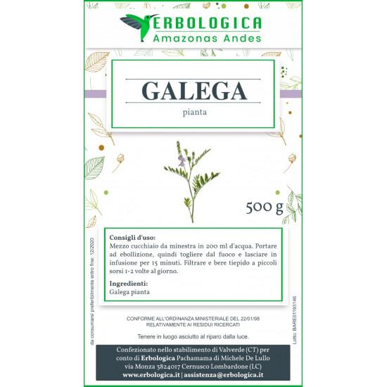 Galega pianta tisana